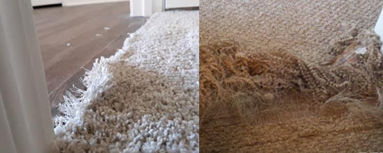 Best Carpet Repair Athelstone