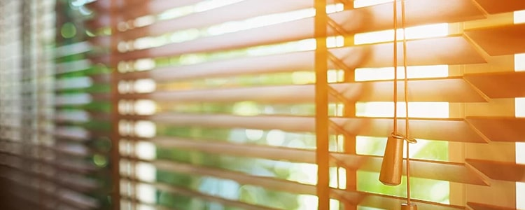 Best Curtains And Blinds Cleaning Athelstone